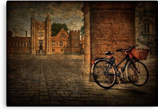 City Wheels by Evelina Kremsdorf