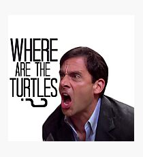 Michael Scott - Where Are the Turtles? Photographic Print