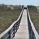 Bridge over the Dune - Salvo NC by Robin Black