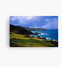 Devon coast on a sunny day Canvas Print