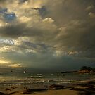 autumn sunset. tasmania by tim buckley   bodhiimages