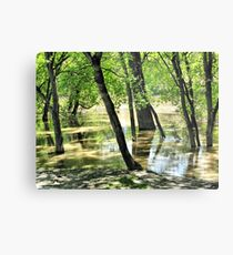 River Flooding Metal Print