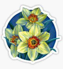 Daffodils T Sticker