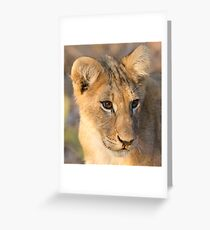 Runny Nose Greeting Card