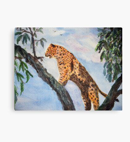 Jaguar in tree Canvas Print