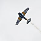 Harvard Flight by bazcelt