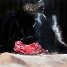 Black Jaguar dining by Marcel van Ommeren