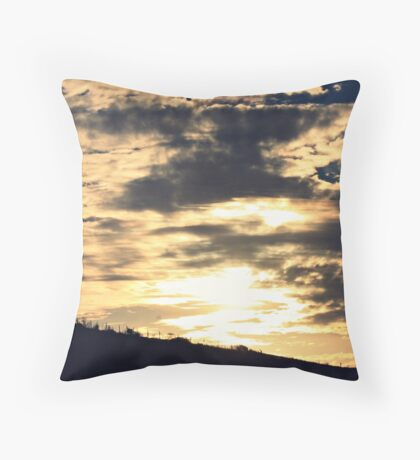 solace in the sweeping bow Throw Pillow