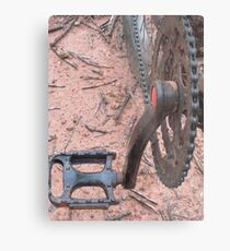 Pedals Metal Print