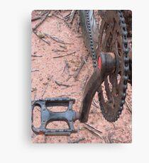 Pedals Canvas Print