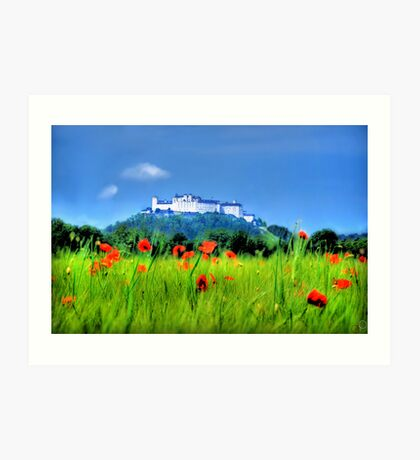 Salzburg Poppies Art Print