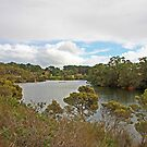 Kalgan River 2 by Robert Abraham
