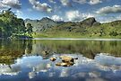Blea Tarn...The Afternoon Before The Morning After. by Jamie  Green