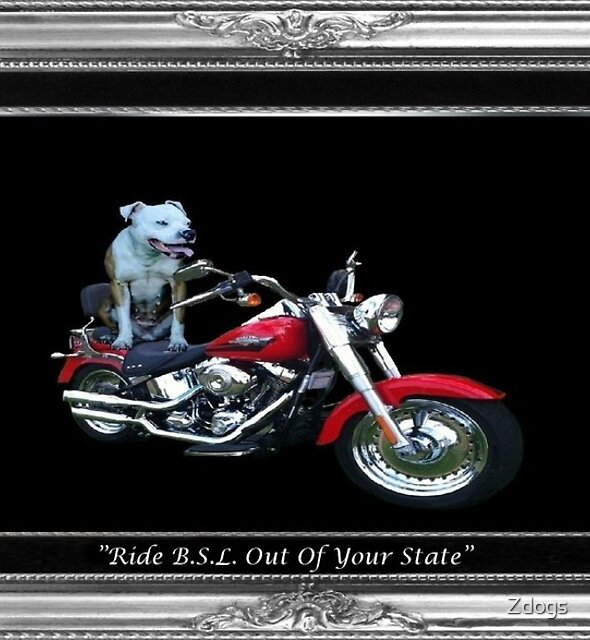 Ride BSL Out Of Your State by Zdogs
