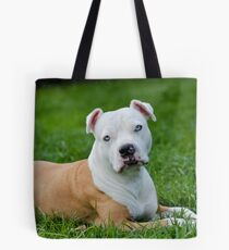 I Is Having A Rest Mum  ~ Colour Version Tote Bag