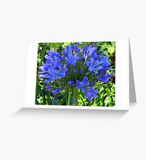 Blue Ball Of Flower Greeting Card