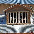 Birds-in-Dormer 2, Santuario de Chimayo, NewMexico by VoxOrpheus