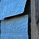 Blue Shack, Detail 2, Santa Fe, New Mexico by VoxOrpheus