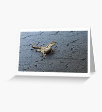 First Incursion - Curly Tailed Lizard Greeting Card