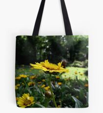 Latest Find Tote Bag