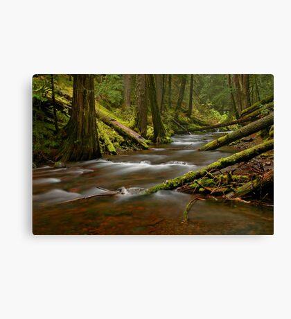 Panther Creek Landscape Canvas Print
