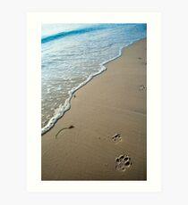 Dog walks Art Print