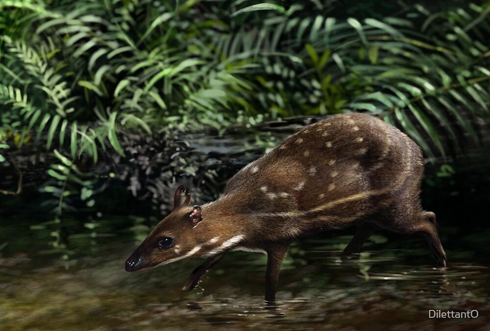 Quot Water Chevrotain Hyemoschus Aquaticus Digital Painting