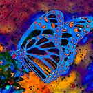 Midnight Butterfly on Planet Zorg by Heather Friedman