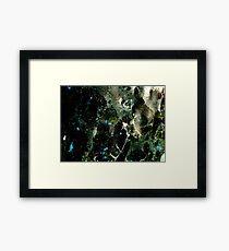 Timey-wimey Framed Print