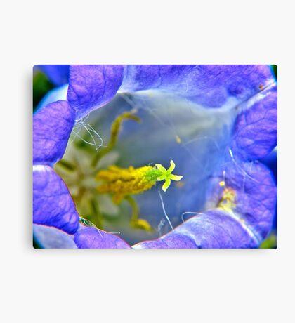 Botanically Explicit - Flower Macro Canvas Print