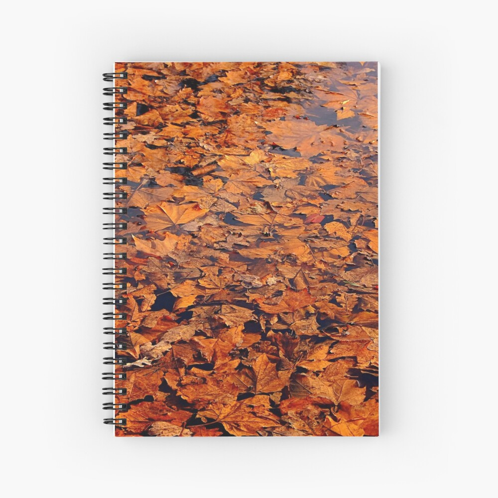 Drowned autumn Spiral Notebook