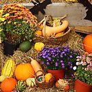 Autumn Fair by karina5