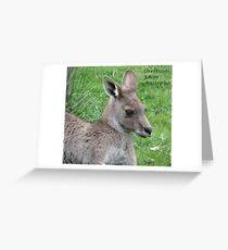 Grampians Kangaroo Greeting Card