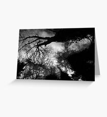 Ominous Trees in Black and White Greeting Card