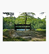 A Quiet Bench On A Quiet Pond  Photographic Print