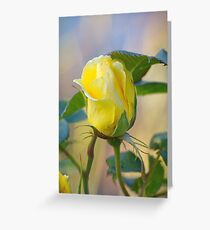 a rose for the teacher... Greeting Card