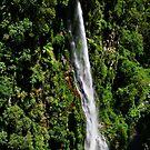 Vertiginous Coomera Falls by Robert Mullner