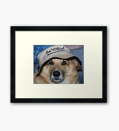 """"""" She Made Me Wear This """" Framed Print"""