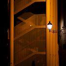 Night walk by Gabor Pozsgai