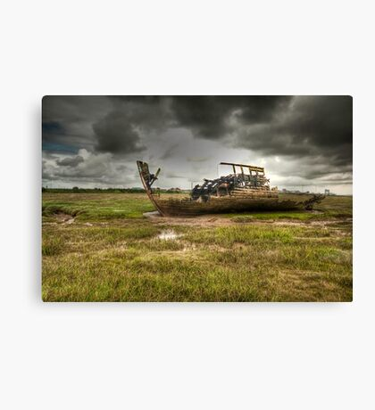 Grounded And Gutted Canvas Print