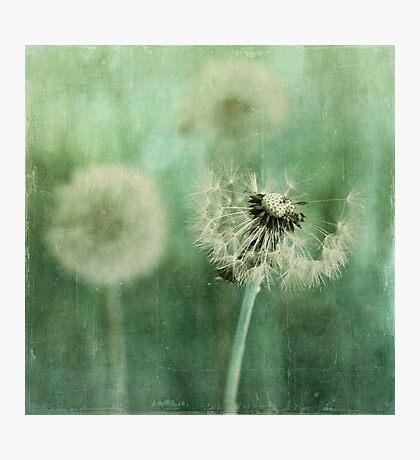 Gone Photographic Print