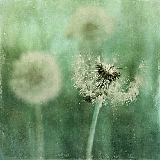 Gone by Priska Wettstein