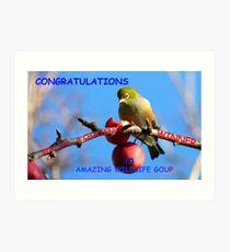 Challenge Banner Entry - Amazing Wildlife Group - Silvereye NZ Art Print