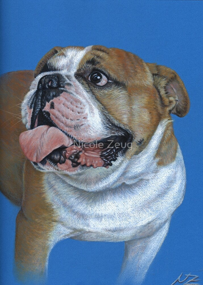 English Bulldog by Nicole Zeug