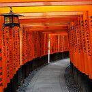 Tori Gates of Fushimi Inari Shrine by Dan Bronish