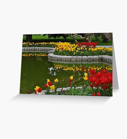 Tulip Time in Turkey Greeting Card