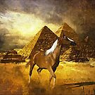Egyptian Freedom by scatharis
