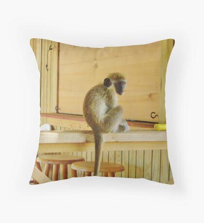 Oliver the Vervet Monkey Throw Pillow