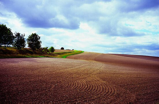 Ploughed field in Hertfordshire. by Michael Schmid
