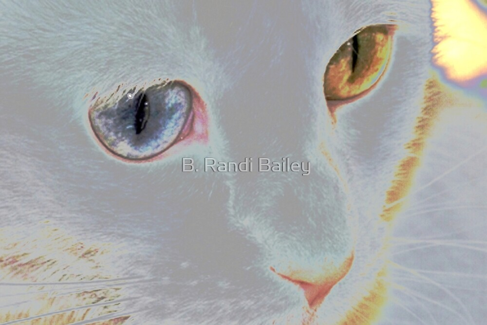 My ethereal delight by ♥⊱ B. Randi Bailey